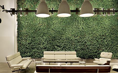 Herman Miller\'s Design for Growth